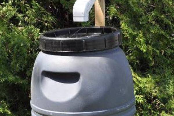 Baril récupérateur d'eau