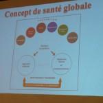 Concept de santé globale