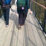 Sur la passerelle des chutes Montmorency