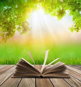 Un journal créatif dans la nature